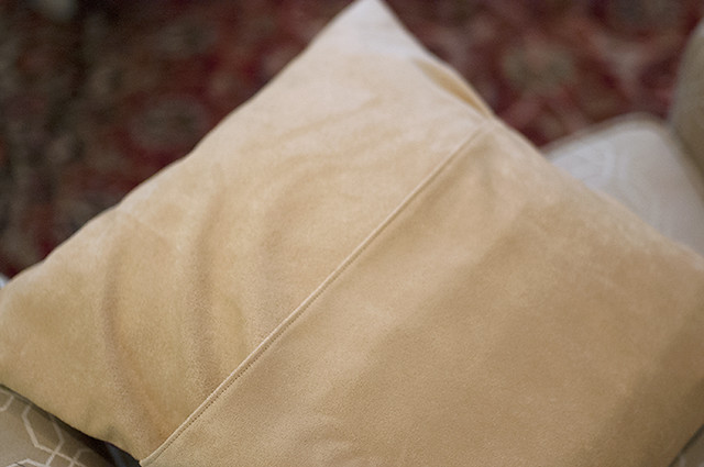 Moth Pillow Back