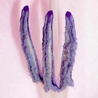 gladiolus stamens