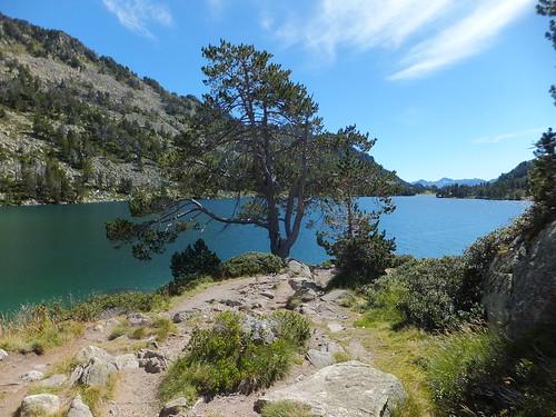 Lac du Gourg de Rabas 293