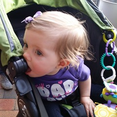 Kara found new ways to nom her pram while out today #omnomnom #mybeautifulbaby
