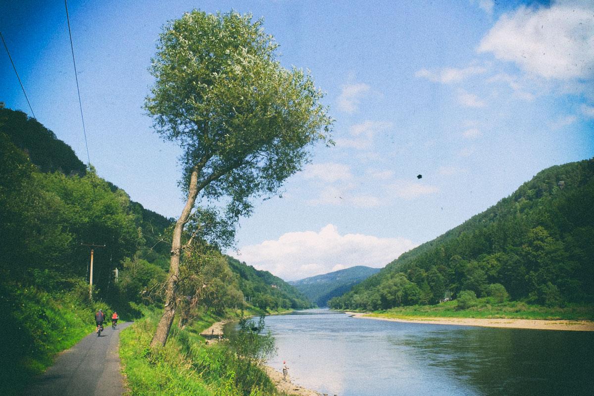 Elberadweg nach Tetschen