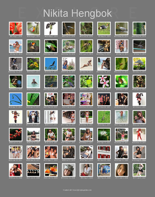 My Photos In Flickr Explore