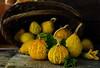 pumpkin.2