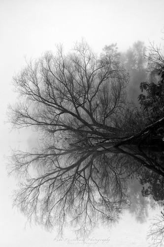 blackandwhite monochrome canon river landscape published sydney style peaceful australia places calm richmond nsw newsouthwales windsor hawkesburyriver leefilters canoneos5dmkiii renekisselbachphotography