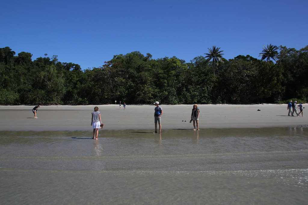cape tribulation beach, cape tribulation, thornton beach, thornton peak, cooper creek