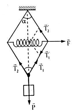 Bài tập lực đàn hồi của lò xo, định luật Húc