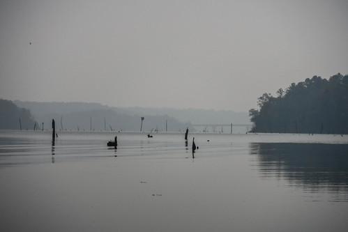 elberton georgia kayaking moffitsville paddling southcarolina unitedstates us