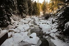 Hiking Fish Creek Falls