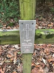 William Crossno memorial on Blue Trail