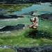 poisen bath by laura zalenga