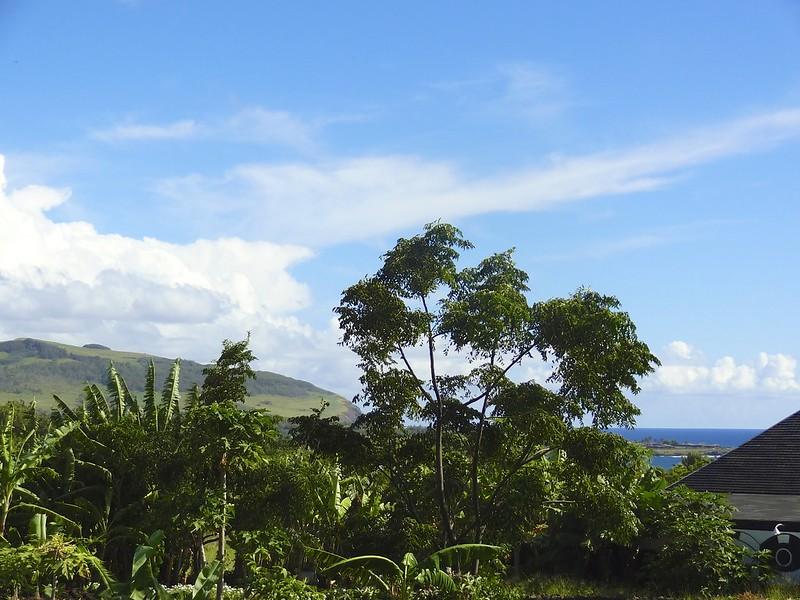 Easter island 21 35
