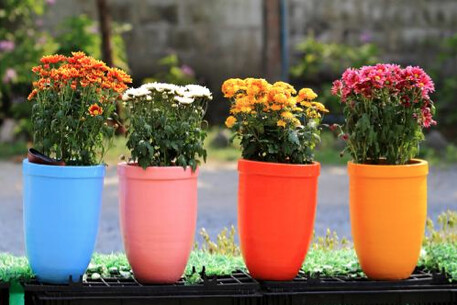 garden decoration ideas flower pots