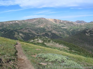 Looking back down the trail up Mount Chapin, Rocky Mountain National Park, Colorado