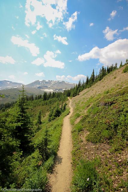 Skyline Trail Flickr-006