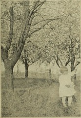 "Image from page 656 of ""The Utah Farmer : Devoted to Agriculture in the Rocky Mountain Region"" (1913)"