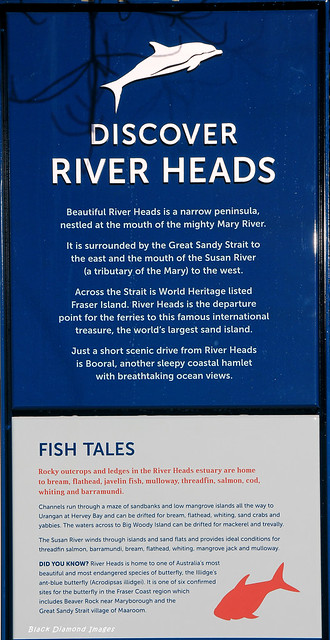 Discover River Heads & Fish Tales Interpretive Sign, River Heads Carpark, River Heads, Hervey Bay, SE Queensland