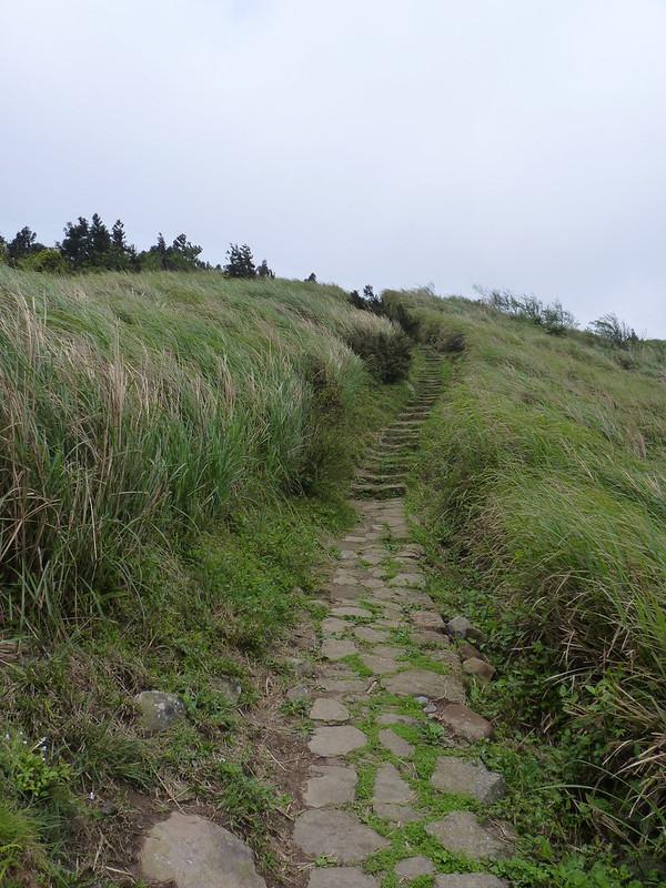 20140404頂山-石梯嶺步道 (2)