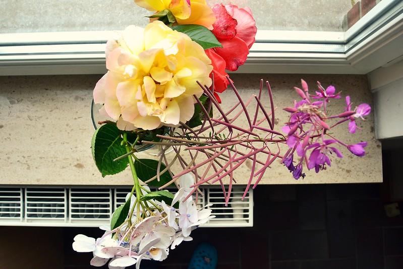 flores de nuestro jardin