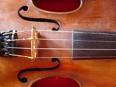 bowed string instrument, string instrument, viola, bass violin, cello, string instrument,