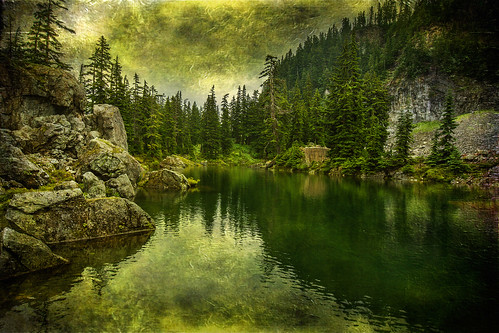 trees texture fog reflections explore 306 snoqualmiepass lenabemanna tinkhamtarn