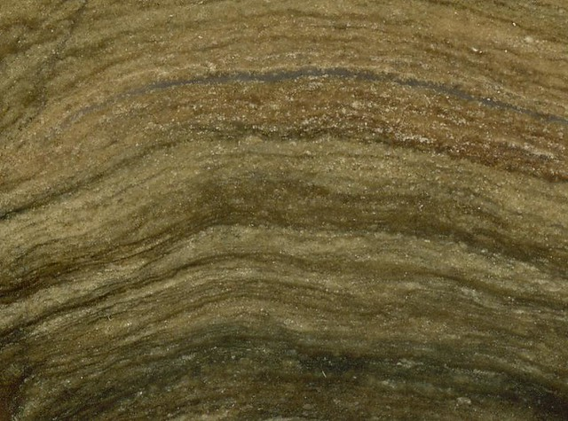 Photo:Stromatolite (Fort Laclede Bed, Laney Member, Green River Formation, Lower Eocene; ancient Lake Gosiute, southwestern Wyoming, USA) 2 By James St. John