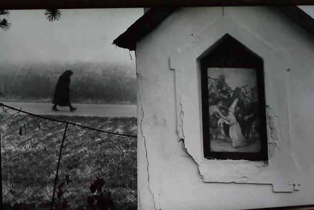 Paysage de campagne hongroise (années 1950 ?)