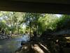 CreekAugust13-2014  :   DSCN2802
