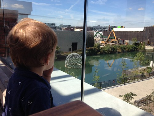 Elliott Watching Construction Site