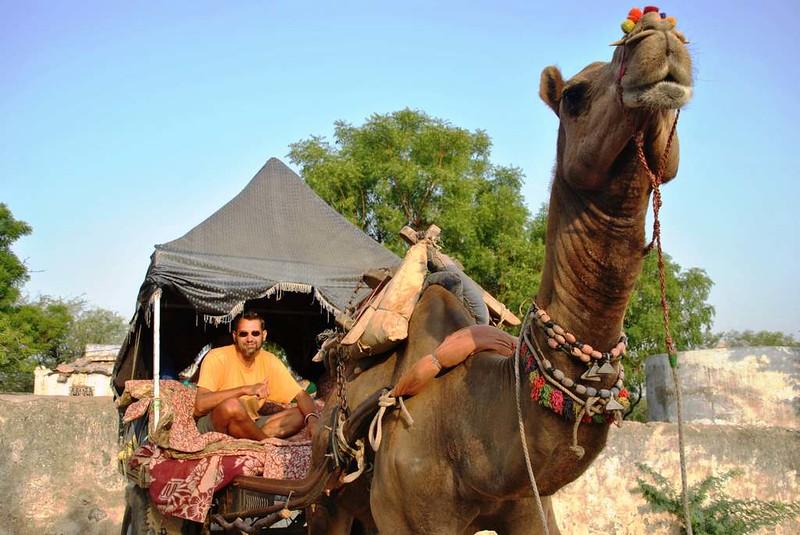 250 Camel safari a Jaisalmer (9)