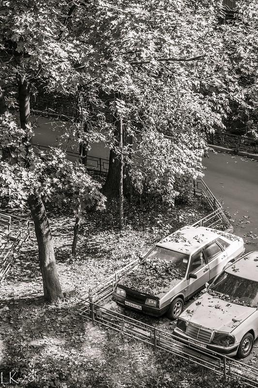 Kostantina Simonova Street, Moscow