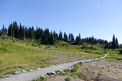 Mount_Rainier_National_Park-32.jpg