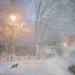 December evening by BirgittaSjostedt