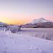 Cold winter. by Reidar Trekkvold