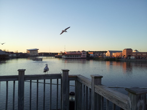 Myrtle Beach New Years 2012