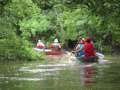 Canoeing up the Bayou