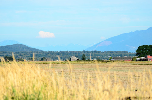 Skagit Valley and Samish Island-16