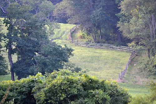 philadelphia fence hill foxchasefarm