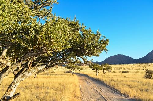 Retraite de dunes Barchan, Namibie