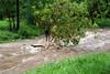 August 2014 Flood in Granite Creek Park 1