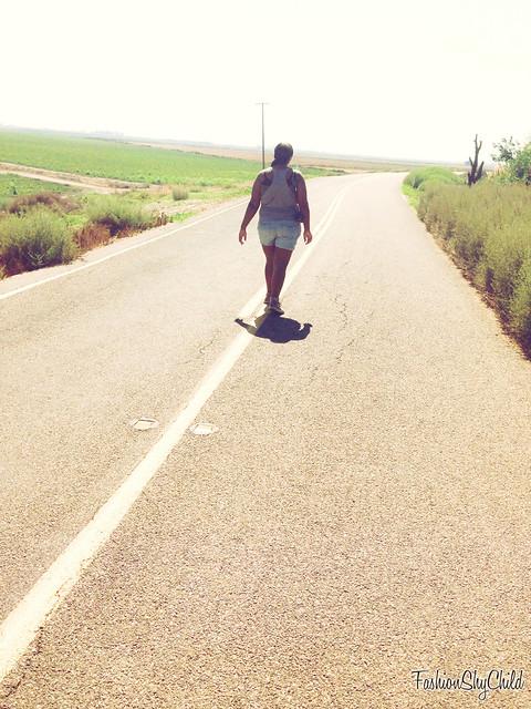 hitchhike1