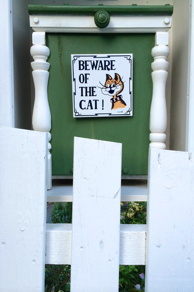 Beware of the cat!