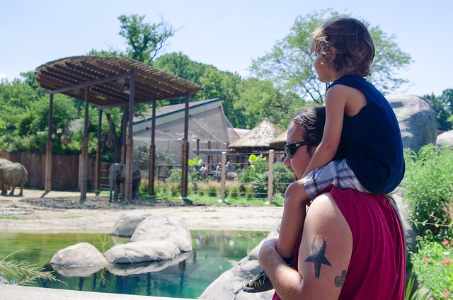 20140823-Cleveland-Zoo-Trip-3383