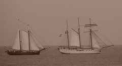 sail, sailboat, sailing ship, schooner, vehicle, ship, windjammer, mast, frigate, sloop-of-war, tall ship, watercraft, boat, galleon,