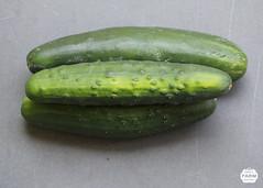 summer squash(0.0), plant(0.0), fruit(0.0), gourd(0.0), vegetable(1.0), produce(1.0), food(1.0), cucumber(1.0),