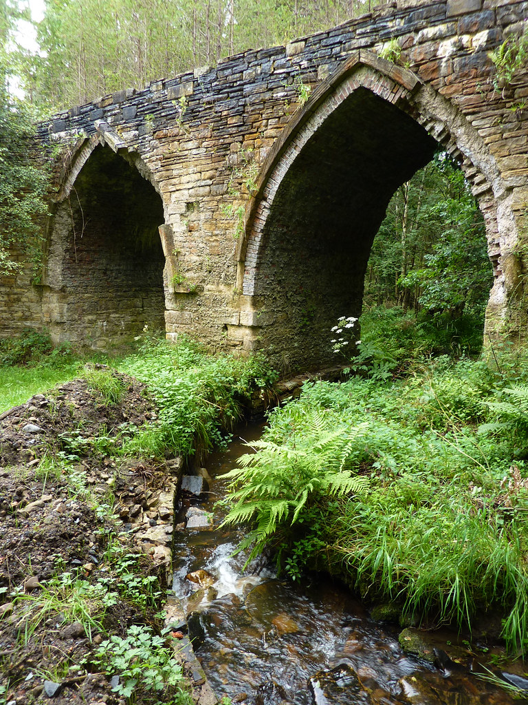 Dukesfield Arches 2012 (B)