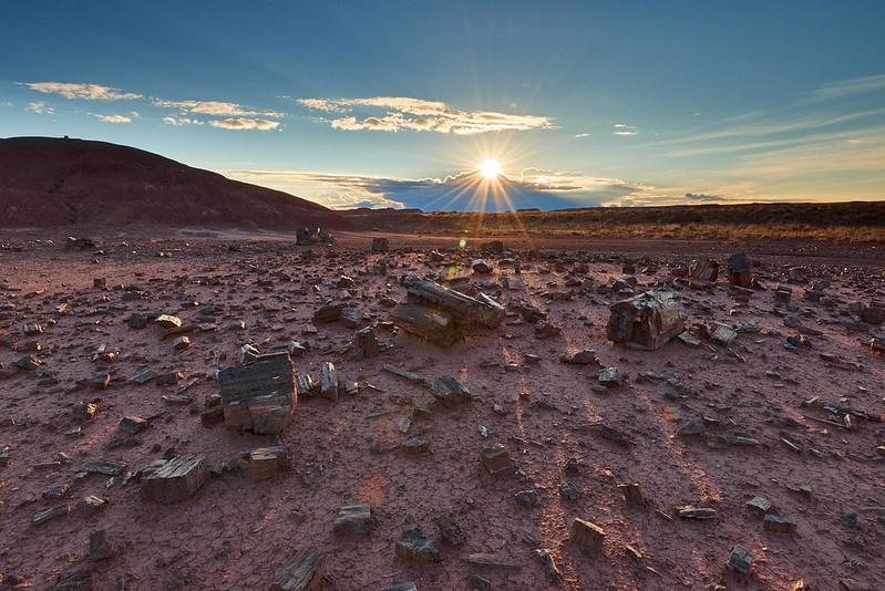 Sunrise - Petrified Forest National Park