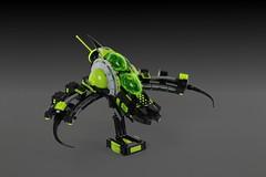 SF-1 Myotis