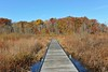 Autumn at Punderson State Park