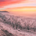 Christmas story by Dejan Hudoletnjak