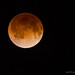 The Blood Red Moon by Photomike07 / MDSimages.com